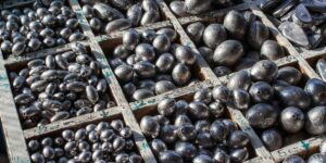 what size sinkers for river fishing