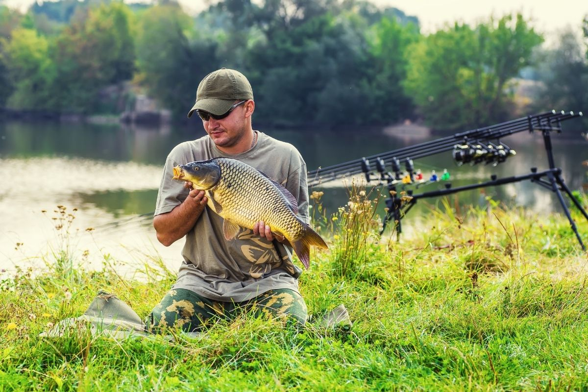 How to Catch Carp in a Pond