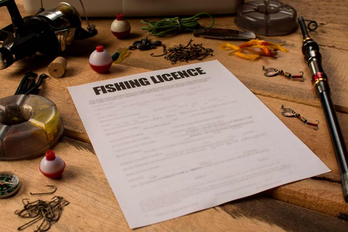 Fishing License In The US